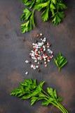 荷兰芹、盐和胡椒 烹饪的背景 免版税库存图片