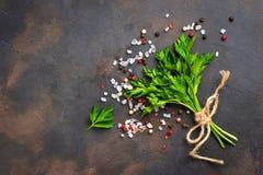 荷兰芹、盐和胡椒 烹饪的背景 图库摄影