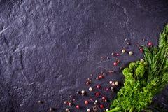 荷兰芹和莳萝用香料 库存图片