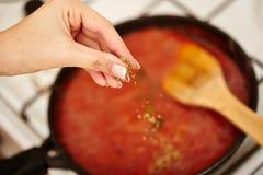 洒荷兰芹和蓬蒿在汤锅的厨师的手 库存照片