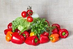荷兰芹,北京圆白菜,茴香,辣椒粉,在一块灰色帆布的蕃茄 免版税库存图片