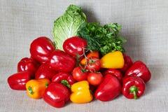 荷兰芹,蕃茄,辣椒粉,北京圆白菜,在一块灰色帆布的茴香 库存照片