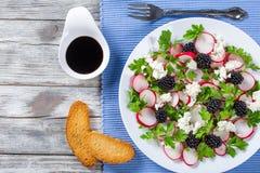 荷兰芹,黑莓,萝卜,山羊乳干酪沙拉,顶视图 免版税库存图片