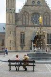 荷兰议会在荷兰 免版税库存图片