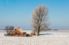 荷兰语农厂冬天 免版税库存照片