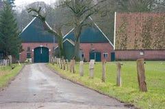荷兰语农场 库存照片
