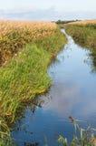 荷兰语农村横向在秋天 免版税图库摄影