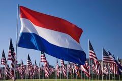 荷兰语和美国国旗 免版税库存照片