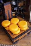 荷兰语干酪 免版税图库摄影