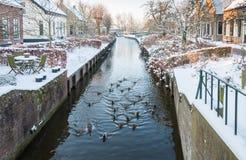 荷兰语村庄运河在冬天 库存图片