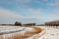 荷兰语横向农村冬天 免版税库存照片