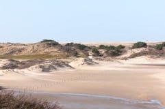 荷兰语的沙丘 库存照片