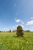 荷兰语的泰尔斯海灵岛坟园 免版税库存图片