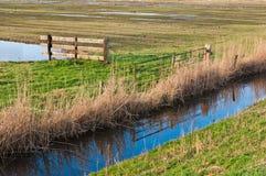 荷兰语范围使自然环境美化 免版税图库摄影