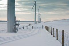 荷兰语雪风车冬天 库存图片