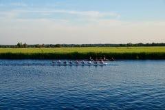 荷兰运河的划船者有风景草和农田的 库存照片