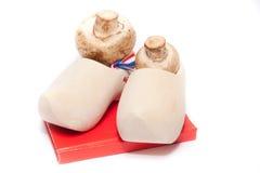 荷兰鞋子 免版税库存图片