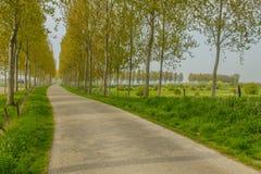 荷兰风景- Heinkenszand -西兰省 库存图片