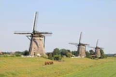 荷兰 免版税库存图片