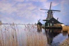 荷兰schans风车zaanse 图库摄影
