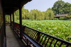 荷花池外部看法在夏天以后变老了中国走廊 图库摄影