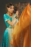 莎丽服的美丽的妇女 免版税库存照片
