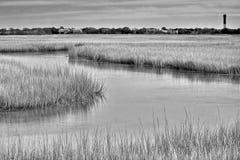 莎莉文的海岛沼泽 图库摄影