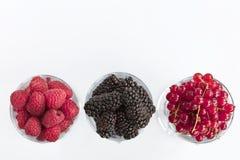 莓、一个大黑黑莓和红浆果位于清楚的玻璃轻的背景 免版税库存图片