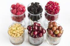 莓、鹅莓、一个大黑黑莓、红浆果和桑树位于清楚的玻璃轻的背景 免版税图库摄影