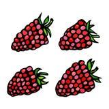 莓乱画样式传染媒介剪影,隔绝在白色背景 免版税图库摄影