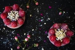 莓乳酪蛋糕 免版税库存照片