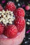 莓乳酪蛋糕 图库摄影