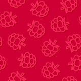 莓低落多无缝的样式 在黑暗的背景的桃红色莓 库存照片