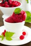 莓冰糕 免版税图库摄影