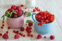 莓和红浆果 库存图片