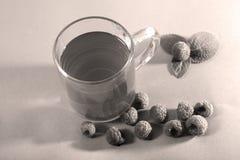 莓和茶 免版税库存照片