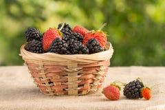 黑莓和草莓在柳条筐在叶子背景  库存图片