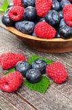 莓和蓝莓背景  免版税库存图片