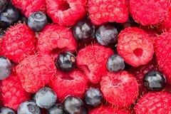 莓和蓝莓 宏观新鲜的有机的莓果 果子后面 免版税库存照片