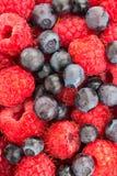 莓和蓝莓 宏观新鲜的有机的莓果 果子后面 库存照片