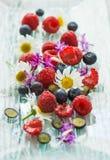 莓和蓝莓 免版税图库摄影