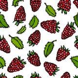 莓和薄荷叶乱画样式传染媒介剪影,隔绝在白色背景 图库摄影