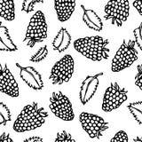 莓和薄荷叶乱画样式传染媒介剪影,隔绝在白色背景 免版税库存图片