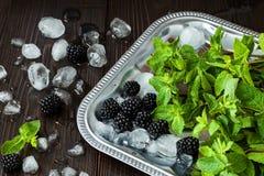 黑莓和薄菏与冰在银色盘子在黑暗的土气木桌 夏天背景 免版税库存照片