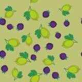 黑莓和鹅莓动画片无缝的纹理644 向量例证