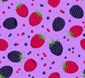 莓和黑莓无缝的样式 免版税库存照片