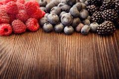 莓和黑莓 免版税库存照片