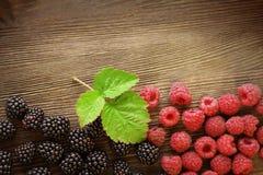 莓和黑莓 库存照片