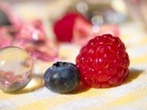 莓和Bluberry 库存照片