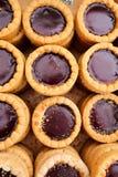 莓巧克力馅饼 图库摄影